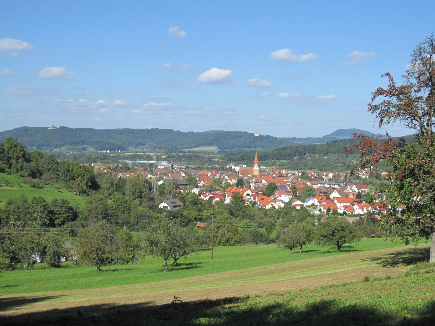 SE view of Gingen an der Fils